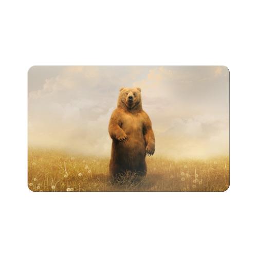 Магнит виниловый Visa  Фото 01, Медведь в поле