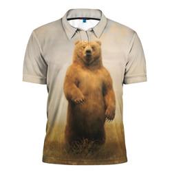 Медведь в поле