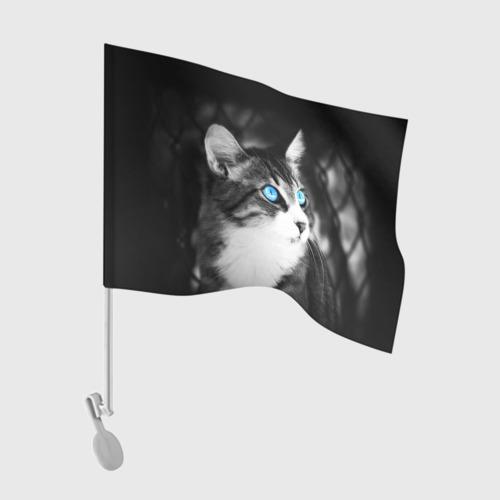 Флаг для автомобиля Кот Фото 01