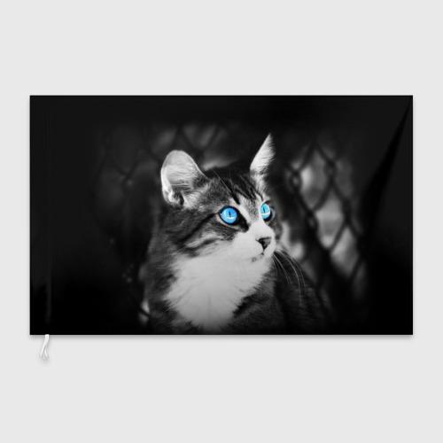 Флаг 3D Кот Фото 01