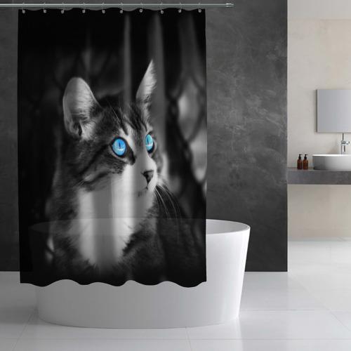 Штора 3D для ванной Кот Фото 01