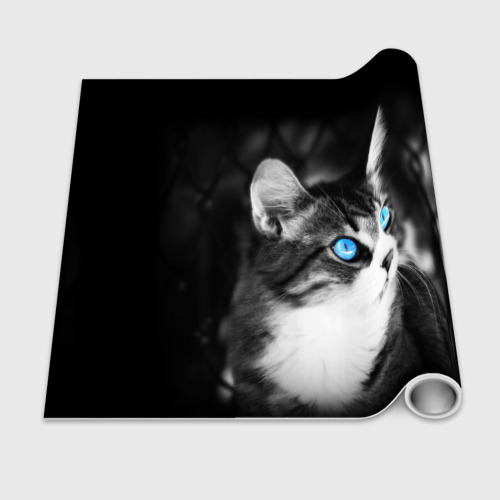 Бумага для упаковки 3D Кот Фото 01