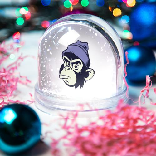 Водяной шар со снегом  Фото 03, Обезьяна в шапке