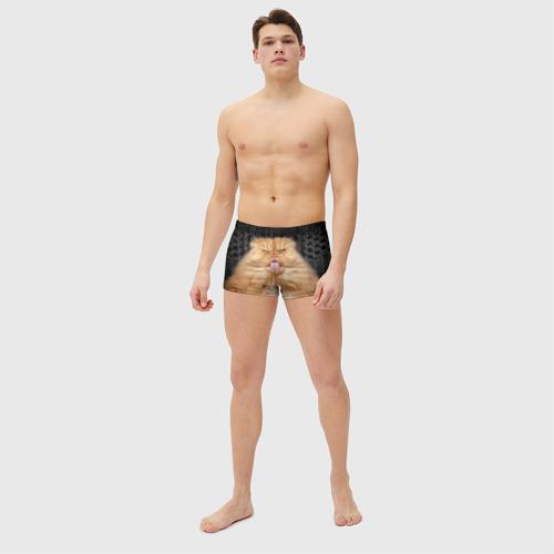 Мужские купальные плавки 3D Кот Фото 01