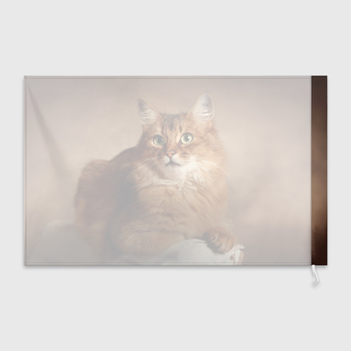 Флаг 3D  Фото 02, Кот
