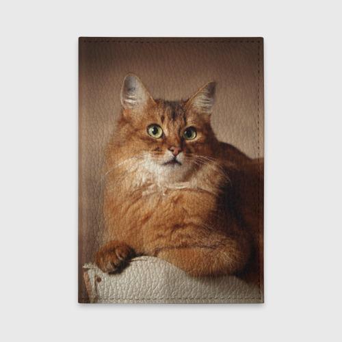 Обложка для автодокументов  Фото 01, Кот