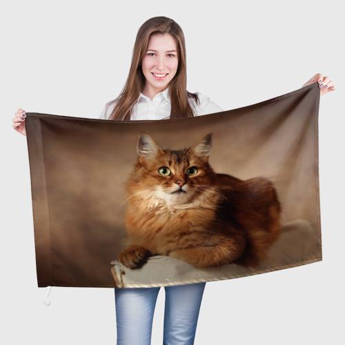 Флаг 3D  Фото 01, Кот