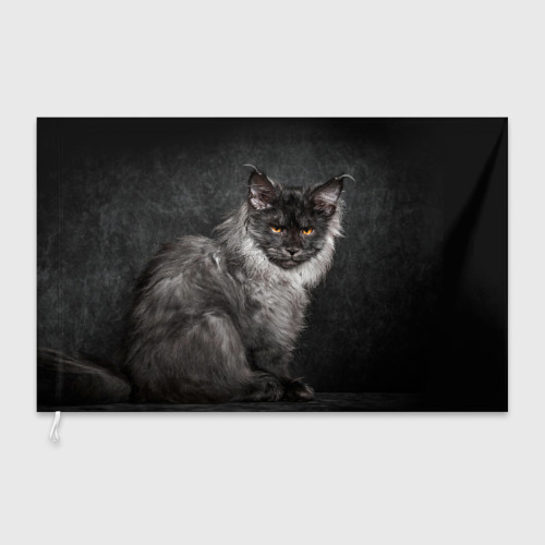 Флаг 3D  Фото 03, Кот