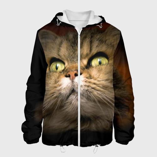Мужская куртка 3D  Фото 01, Кот