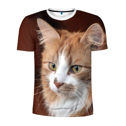 Мужская футболка 3D спортивная  Фото 01, Кот