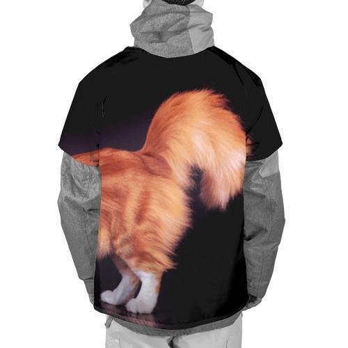 Накидка на куртку 3D  Фото 02, Рыжий кот