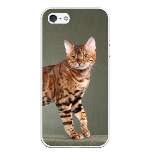 Чехол силиконовый для Телефон Apple iPhone 5/5S Бенгальский кот от Всемайки