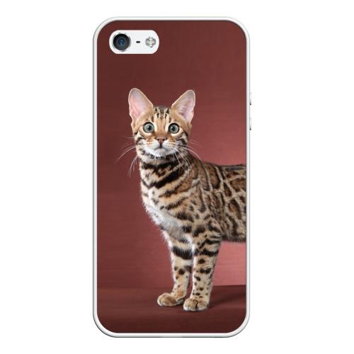 Чехол силиконовый для Телефон Apple iPhone 5/5S Кот от Всемайки