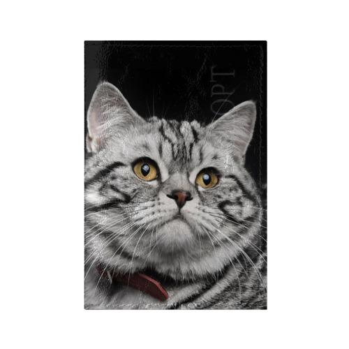 Обложка для паспорта глянцевая кожа Кот от Всемайки
