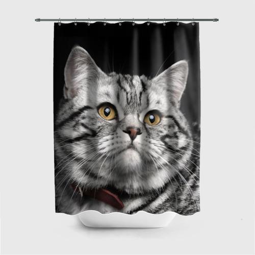 Штора для ванной Кот от Всемайки