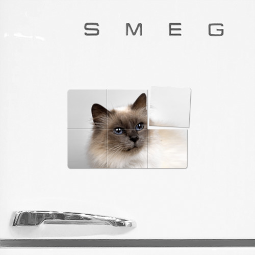 Магнитный плакат 3Х2  Фото 02, Кот