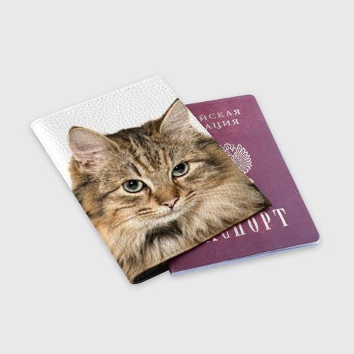 Обложка для паспорта матовая кожа  Фото 03, Кот