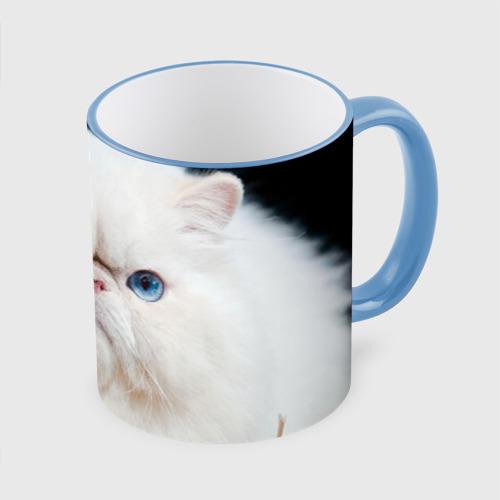 Кружка с полной запечаткой  Фото 01, Персидский кот