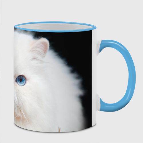 Кружка с полной запечаткой  Фото 02, Персидский кот