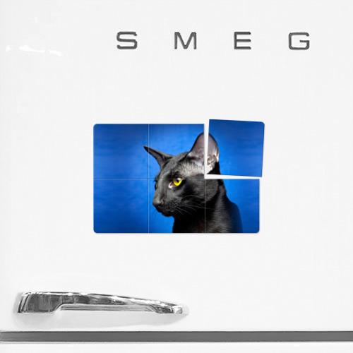 Магнитный плакат 3Х2  Фото 02, Черный кот