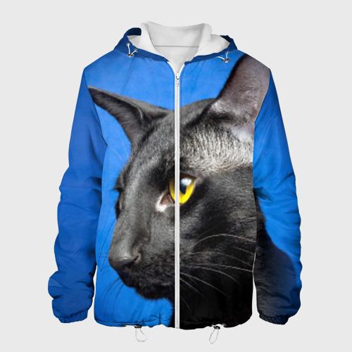 Мужская куртка 3D  Фото 01, Черный кот