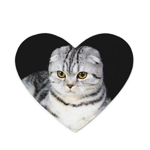Коврик сердце  Фото 01, Кот
