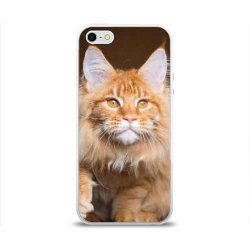 Чехол для Apple iPhone 5/5S силиконовый глянцевый  Фото 01, Кот