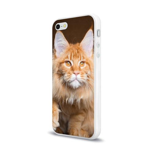 Чехол для Apple iPhone 5/5S силиконовый глянцевый  Фото 03, Кот