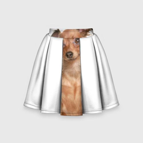 Детская юбка-солнце 3D Той-терьер