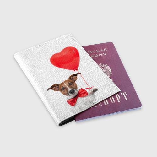Обложка для паспорта матовая кожа  Фото 03, Собака с шариком