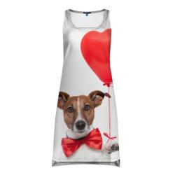 Собака с шариком