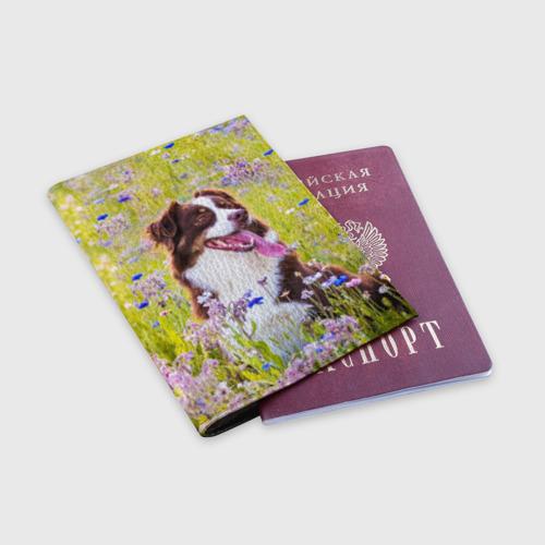 Обложка для паспорта матовая кожа  Фото 03, Австралийская овчарка