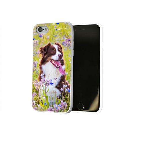 Чехол для Apple iPhone 8 силиконовый глянцевый  Фото 02, Австралийская овчарка