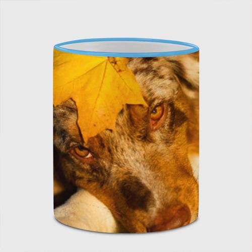 Кружка с полной запечаткой  Фото 03, Австралийская овчарка