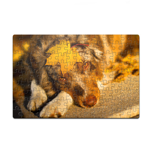 Пазл магнитный 126 элементов Австралийская овчарка от Всемайки