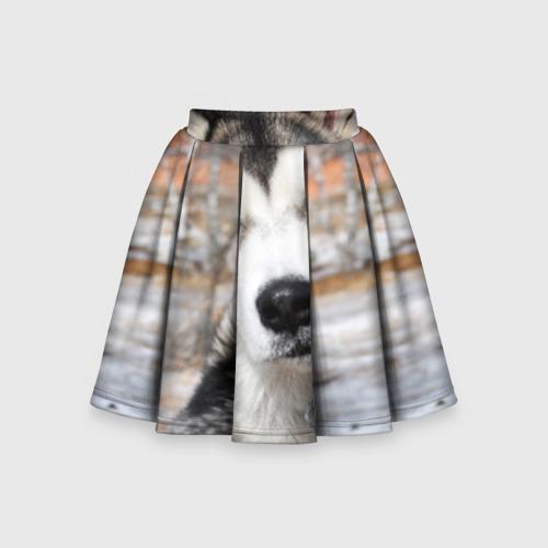 Детская юбка-солнце 3D Аляскинский маламут