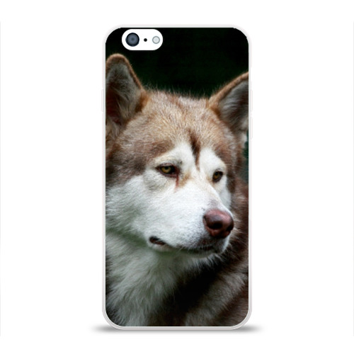 Чехол для Apple iPhone 6 силиконовый глянцевый Аляскинский маламут