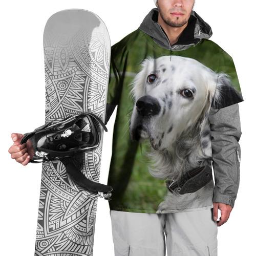 Накидка на куртку 3D  Фото 01, Английский сеттер