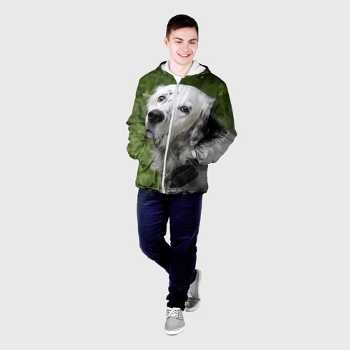 Мужская куртка 3D  Фото 03, Английский сеттер