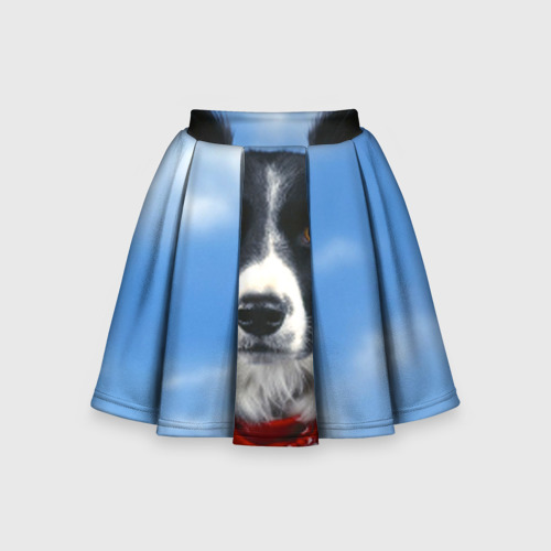 Детская юбка-солнце 3D Бордер-колли
