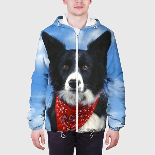 Мужская куртка 3D  Фото 04, Бордер-колли