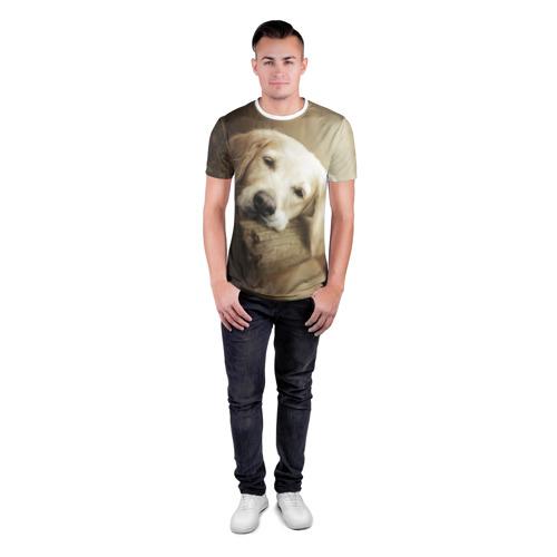 Мужская футболка 3D спортивная  Фото 04, Золотистый ретривер