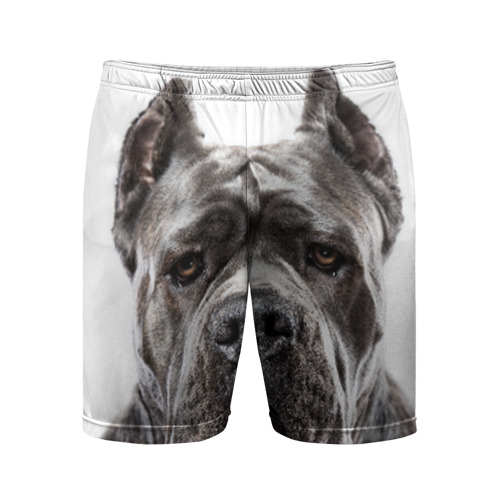Мужские шорты 3D спортивные  Фото 01, Канне корсо