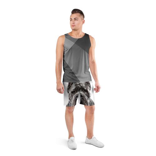 Мужские шорты 3D спортивные  Фото 04, Канне корсо