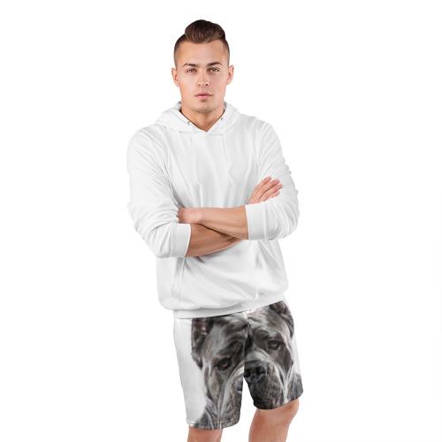 Мужские шорты 3D спортивные  Фото 05, Канне корсо