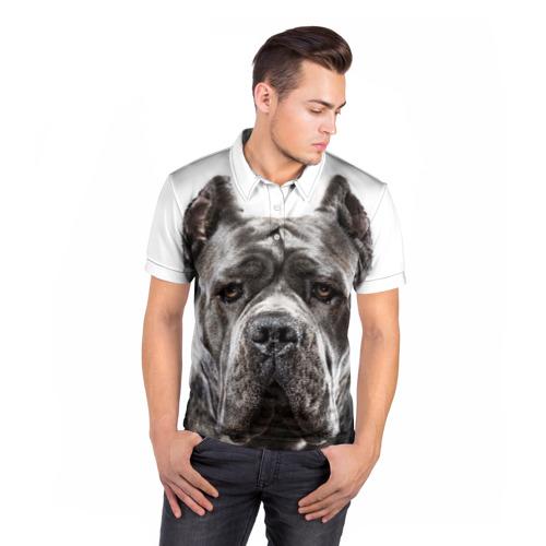 Мужская рубашка поло 3D  Фото 05, Канне корсо