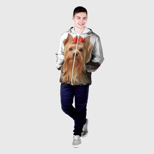 Мужская куртка 3D  Фото 03,  Йоркширский терьер
