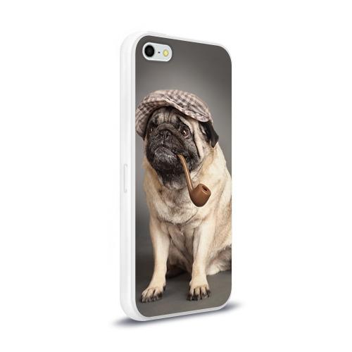 Чехол для Apple iPhone 5/5S силиконовый глянцевый  Фото 02, Мопс в кепке