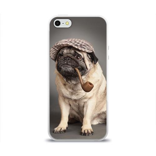 Чехол для Apple iPhone 5/5S силиконовый глянцевый  Фото 01, Мопс в кепке