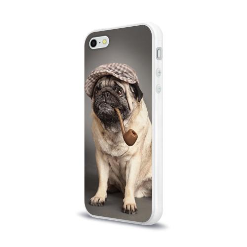Чехол для Apple iPhone 5/5S силиконовый глянцевый  Фото 03, Мопс в кепке